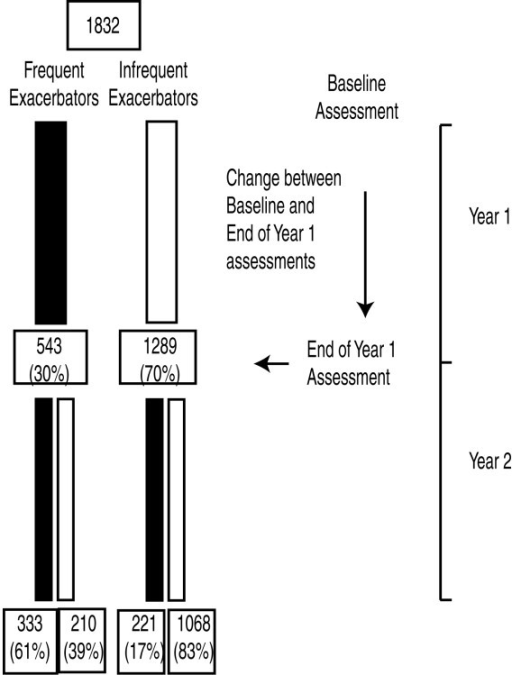 Timing of assessment and patient exacerbation categorization during the initial two years of the ECLIPSE study.