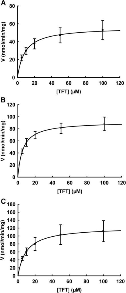 Substrate saturation curves of TFT with human TK2 (A), human TK1 (B), and Ureaplasma TK (C). Kinetic assays with TFT were performed by using [γ-32P]-ATP as the labelled substrate at fixed concentration and variable concentrations of TFT. The reaction products were separated by thin layer chromatography, and quantified as described in the experimental procedures. Data are from three independent measurements and are presented as mean ± SD.