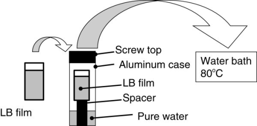 The procedure of the hydrothermal treatment (HTT). An aluminum tube (ca. 20 mm in diameter and 150 mm long) was first filled with pure water of 2 mL. The LB sample was put in the tube using a spacer to prevent direct contact of the sample with the water. Finally, the tube was closed by a screw lid using a Teflon tape and immersed in a water bath kept at 80°C.