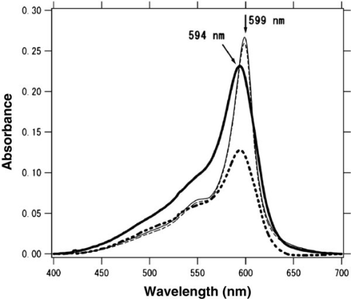 Typical absorption spectra of a ten-layered MS-C20 binary LB film. The thick solid and dashed lines represent A// and A⟂of the as-deposited state, respectively; the thin solid and dashed lines represent A// and A⟂ after hydrothermal treatment (HTT) at 80°C for 60 min.