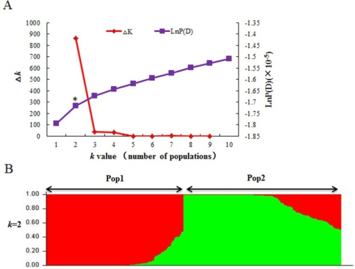 Population structure analysis of 262 wheat accessions based on 209 SSR markers.(A) Estimated LnP(D) and △k over five repeats of STRUCTURE analysis; (B) Two sub-populations inferred by structure analysis. Each of the 262 individuals is represented by a vertical line and different colors indicate different sub-populations. Asterisk in (A) indicates the point of the most significant change in the LnP(D) value.