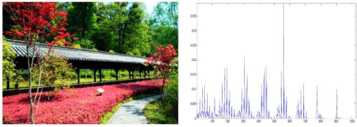 An image and its color histogram.