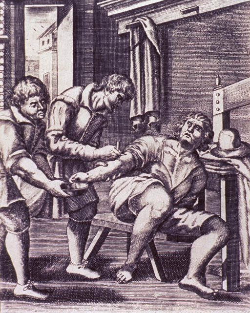 <p>A man, sitting on a bench, is having his right arm bled; the surgeon is applying the lancet, and an assistant is ready with a bowl.</p>