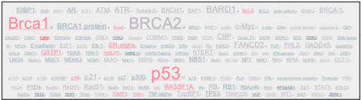A tag cloud built from genes related to Brca1. This tag cloud was built automatically using the iHOPerator user-script. It is composed of gene names extracted from abstracts associated with the gene Brca1 (in mouse). Colour (redness) correlates with the impact factor of the journals where the gene name occurs. Size correlates with the number of times the related gene name occurs in association with the gene in question – in this case Brca1.
