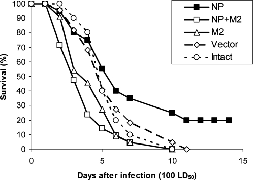 Survival of mice vaccinated with the combinations of pNP and pM2 after challenge with 100 LD50 of H5N2 influenza virus strain A/Mallard/Pennsylvania/10218/84.Animals were immunized and challenged as described in Materials and Methods.