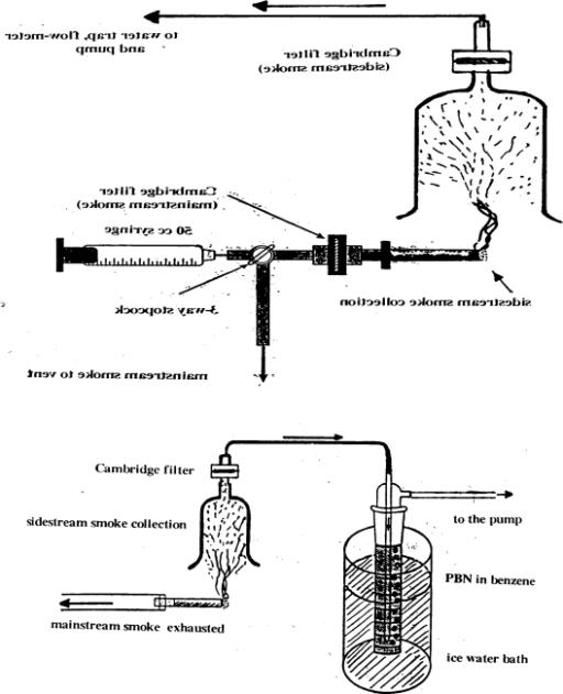 Diagrams of the methods used for the collection of main