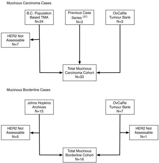 Flowchart outlining the process of case identification for our retrospective series of mucinous ovarian cancers and mucinous borderline ovarian tumors.