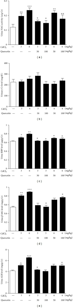 Effects of a 4-week treatment of CdCl2 and coadministration of quercetin on urinary activity of NAG (a), levels of Cr (b), RBP (c), β2-MG (d), and ALB (e) in rats. Values are mean ± SEM of n = 8 in each group. P value CdCl2 versus control at +<0.05, ++<0.01, and +++<0.001; treatment versus CdCl2 at *<0.05 and **<0.01 for LSD post hoc test.