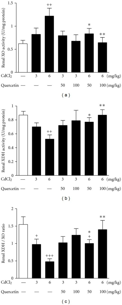 Effects of a 4-week treatment of CdCl2 and coadministration of quercetin on renal XO (a), XDH activity (b) and XDH/XO ratio in rats (c). Values are mean ± SEM of n = 6–8 in each group. P value CdCl2 versus control at +<0.05, ++<0.01, and +++<0.001; treatment versus CdCl2 at *<0.05 and **<0.01 for LSD post hoc test.