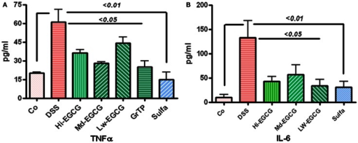 (A) DSS-induced colitic animals had increased secretion of inflammatory cytokine TNFα in blood circulation. EGCG therapy significantly prevented increased secretion (p < 0.05) and sulfasalazine normalized TNFα secretion. (B) Multifunctional cytokine, IL-6 was drastically increased in DSS-induced colitic animals. EGCG (p < 0.05) and sulfasalazine (p < 0.01) significantly reduced elevated level of this inflammatory marker in treated animals.