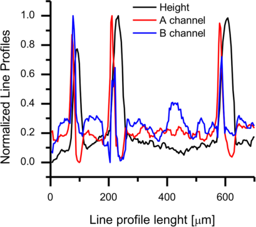 Line profile across three P3HT nanowires probed by SPP-EFM, showing the following normalized channels: height, = (Q/2K)∂2C/∂z2 [°V−2], and B = VCPD [V].