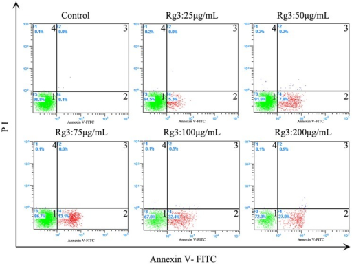 Effect of different concentrations of Rg3 on HSF apoptosis 48 h after treatment.Percentage of apoptotic cells was measured by flow cytometry after annexin-V/propidium iodide (PI) staining. Quandrant 1 indicates live cells; quadrant2 indicates cells in early apoptosis; quadrant 3 indicates cells in late apoptosis; quadrant 4 indicates cells in necrosis.
