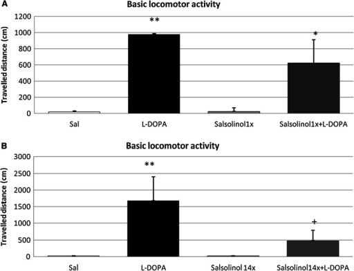 The influence of acute (a) and chronic (b) administration of salsolinol on l-DOPA-induced changes in the locomotor activity of rats. The rats were placed in actometers and, after 40 min of adaptation, received the specified drugs. Salsolinol was administered at a dose of 100 mg/kg i.p acutely (a) or chronically for 14 consecutive days (b). In the combined treatment group, l-DOPA (100 mg/kg i.p.) was administered once 15 min after final salsolinol administration. The control rats received a single injection of saline. Next, the measurement was recorded for 30 min. The data are expressed as the means  ±  SEM (n = 6). The data were analyzed via two-way ANOVA followed by Duncan's post hoc test when appropriate. Statistical significance: *P < 0.05, **P < 0.01 versus the control group; +P < 0.05 versus the l-DOPA-treated group