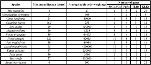 Data of 14 mammalian species used for analysis of correlation.Maximum lifespan and average adult body weight were retrieved from the AnAge database. The number of genes of each family was either found in the literature or searched following the methodology described in the 'Materials and methods'.DOI:http://dx.doi.org/10.7554/eLife.06184.004