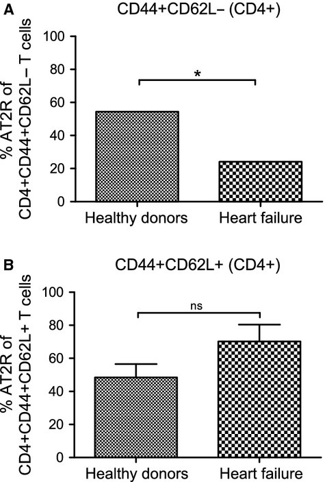 Distribution of the CD4+ AT2R+ T cells within CD4+ CD44+ CD62L− or CD4+ CD44+ CD62L+ T cell subsets A. A decreased frequency of CD4+ AT2R+ T cells within the CD4+ CD44+ CD62L− cell subset was observed in patients with HF. No significant difference was detected within the CD4+ CD44+ CD62L+ T cell subset (B). ns, not significant; *P < 0.05, n = 5.