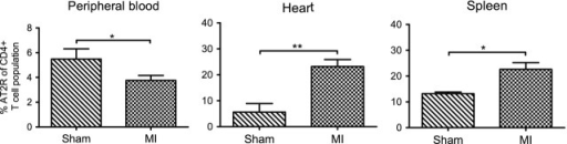 Adaptive redistribution of the CD4+ AT2R+ T cell population in response to myocardial infarction in rats. Frequency of the CD4+ AT2R+ T cells in CD4+ T cells of blood (sham, n = 7; MI, n = 14), heart (sham, n = 5; MI, n = 12), and spleen (sham, n = 3; MI, n = 7) was evaluated by flow cytometry analysis. Quantitative analysis reveals a significant increase of CD4+ AT2R+ T cells in post-infarct heart and spleen, coincident with a decrease in blood; *P < 0.05, **P < 0.01.