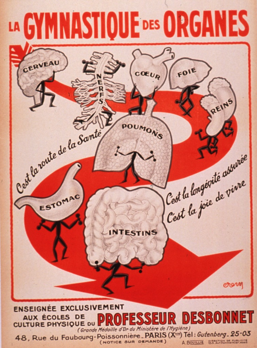 <p>Predominantly tan or discolored white poster with red and black lettering.  Title at top of poster refers to &quot;gymnastics of the organs.&quot;  Visual image is a series of cartoon-style illustrations of various organs working out with tiny dumbbells.  The organs include the brain, the &quot;nerves&quot; as represented by the spinal column, the heart, lungs, liver, kidneys, stomach, and intestines.  Caption text interspersed among illustrations promotes these exercises as the route to health, assured longevity, and vitality.  Note text at bottom of poster states that the exercises are taught exclusively at Professor Desbonnet's physical culture schools.</p>