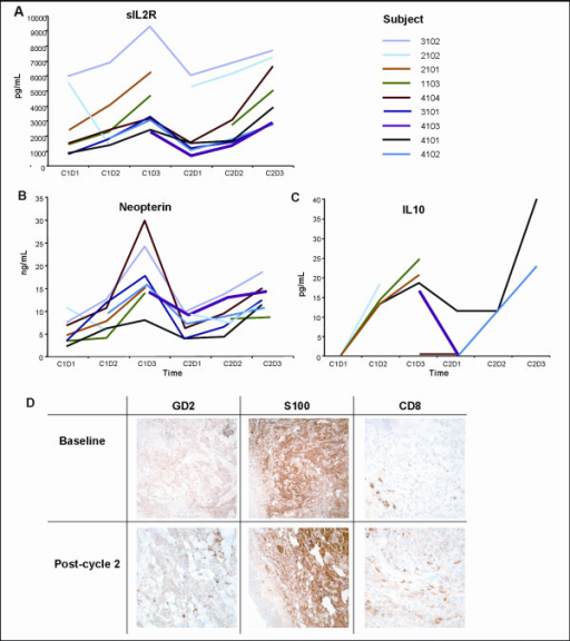 Serum cytokine concentrations and immunohistochemical analysis of tumor biopsies. C = cycle. D = day. A, B, C: Serum concentrations of sIL2R (A), neopterin (B) and IL10 (C) before, during, and after infusions of EMD 273063. Serum samples were drawn before the first infusion (C1D1), during the first cycle infusion (C1D2 and C1D3) and then immediately before (C2D1) and during the second cycle of EMD 273063 (C2D2, C2D3). Depicted are the serum concentrations for each patient tested by ELISA. D: Immunohistochemical analysis of a pre-dosing and cycle 1 post-dosing tumor biopsies from patient 4104, who had disease stabilization over two cycles. Paraffin-fixed melanoma tumor specimens stained by immunohistochemistry for GD2, S100, and CD8 positive prior to and after exposure to EMD 273063.