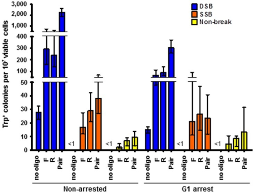 "A nick occurring in asynchronous or G1 arrested cells stimulates gene correction by oligonucleotides equally efficiently.Shown are frequency of Trp+ transformants by oligonucleotides when cells were asynchronous (left) or arrested in G1 (right) at the time of wild-type-I-SceI or K223I I-SceI breakage prior to oligonucleotide transformation and when the SSB is generated on the ""Crick"" strand. All data are presented as the median with range (n≥5). For the specific numerical values see Table S3E. Wild-type I-SceI strains used: SAS-227 and SAS-228. K223I I-SceI strains used: SAS-229 and SAS-230. D145A I-SceI strains used: SAS-231 and SAS-232."