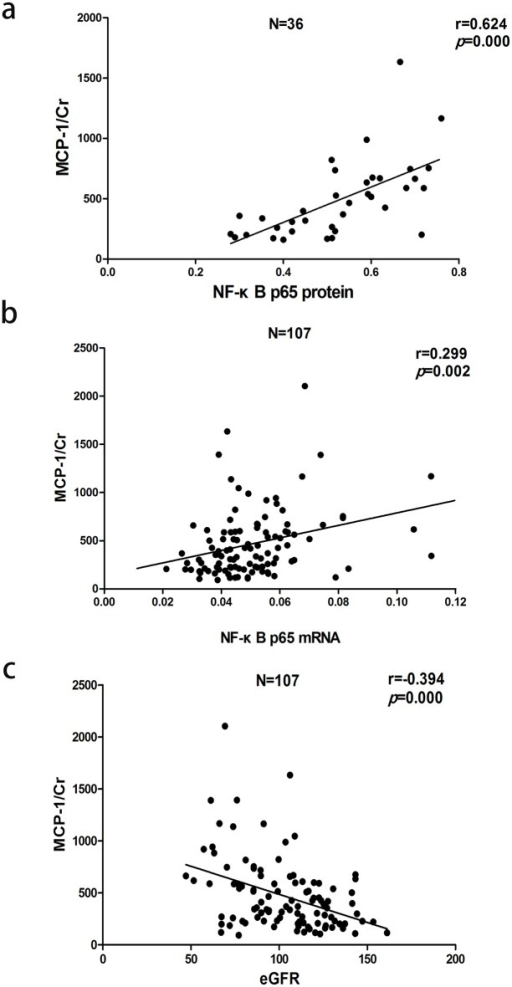 Correlation between urinary MCP-1 excretion rate and (a) nuclear NF-κB p65 protein, (b) NF-κB p65 mRNA or (c) eGFR.