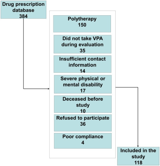 Flowchart for the inclusion of valproate-treated patients with epilepsy.