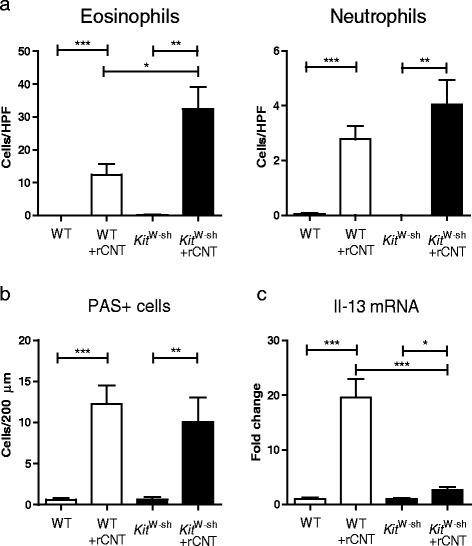 Mast cells play a partial role in the development of rCNT-triggered asthma. Wild type (WT) C57BL/6 mice and mast cell deficient KitW-sh mice in C57BL/6 background were exposed to rCNT for 4 h/day on 4 consecutive days and were sacrificed on day 5. a: BAL cell counts showed that mast cells affect the migration of eosinophils but not neutrophils into the lungs. b: the numbers of PAS+ cells did not differ in WT and KitW-sh mice indicating that mast cells do not regulate the activation of goblet cells. c: the mRNA expression levels measured in lung tissue revealed a significant down-regulation of Th2 type cytokine Il-13 in KitW-sh mice compared with WT mice. PAS+ cell counts (b) represent the average of positive cells per 200 μm of bronchus surface counted from three bronchi per mouse in control group and six bronchi per mouse in CNT-exposed groups (n = 7-9). mRNA expression levels in c are presented as fold changes relative to untreated control mice of the corresponding strain (n = 7-9). *P < 0.05; **P < 0.01; ***P < 0.001.