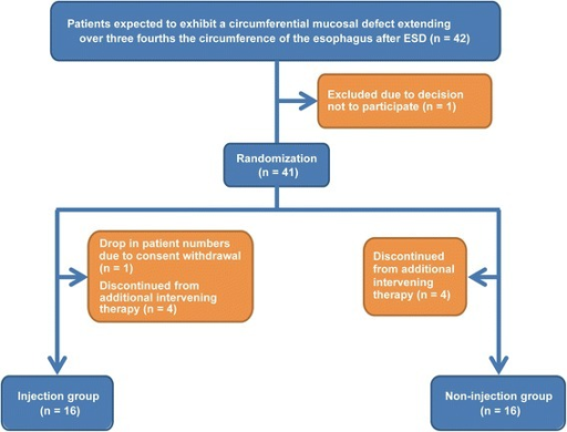 Study flow chart. Patients with an expected circumferential mucosal defect involving ≥75% of the circumference of the esophagus after ESD were eligible. Patients were excluded if they had received additional adjuvant treatments, such as surgery or chemoradiation therapy, or if they were not adequately followed-up.