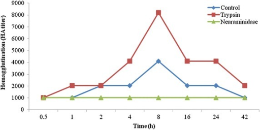 Induction of hemagglutination activity in the hemolymph agglutinin of Paratelphusa jacquemontii by administration of untreated, trypsin treated and asialo rabbit erythrocyte. Graph represents median HA titer values from 10 determinations with the administration of 0.1 ml untreated (control), trypsin (1 mg/ml) and neuraminidase 100 mU/100 µ enzyme treated 10 % suspension of rabbit erythrocyte in PBS (0.01 M sodium phosphate, pH 6.9 and 0.145 M NaCl)