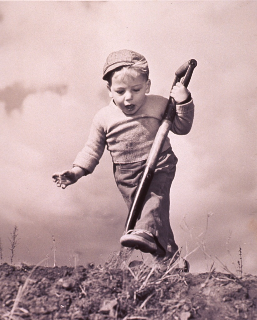 <p>A small boy with a large shovel is attempting to dig a hole.</p>