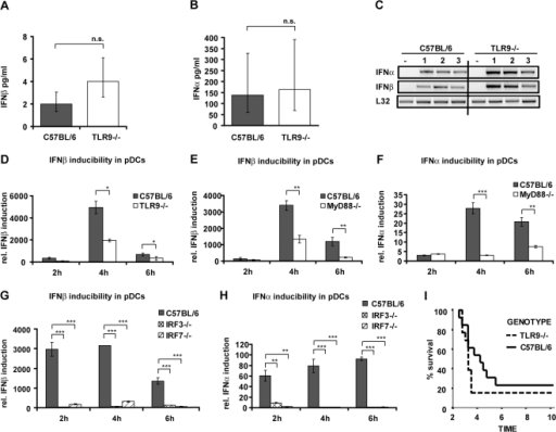 The role of TLR9 in mice and cells infected with L. monocytogenes.(A–C) C57BL/6 wt or TLR9−/− mice were injected i.p. with 5×106 L. monocytogenes (four mice per genotype) or PBS as a control (data not shown). After 24 h of infection, serum was collected and ELISAs for IFNβ (A) and IFNα (B) were performed. Data representing IFNβ (A) and IFNα (B) concentrations were log-transformed (after adding one) to achieve approximate normality. Linear models with genotype as fixed effect were fitted using SPSS. Means plus/minus standard errors of wt and mutant genotypes are plotted (after back-transformation), n.s.: not significant (p>0.05). (C) After 24 h of infection, mice were killed and spleens isolated. RNA was extracted from spleens of three infected mice per genotype (1–3) or from mice injected with PBS (−), and RT-PCR for the indicated genes was performed. As a normalization control, the housekeeping gene L32 was measured. (D–H) pDCs of the indicated genotypes were infected with L. monocytogenes at a MOI of 10. At the indicated time points, total RNA was prepared. The isolated RNA was reverse-transcribed, and induction of the IFNβ (D,E,G) or IFNα (F,H) genes was measured by real-time PCR. For normalization to a housekeeping gene, GAPDH was measured. (I) C57BL/6 wt or TLR9−/− mice (13 mice per genotype, data represent a summary of two experiments) were injected i.p. with 5×106 L. monocytogenes. Survival was monitored for ten days.