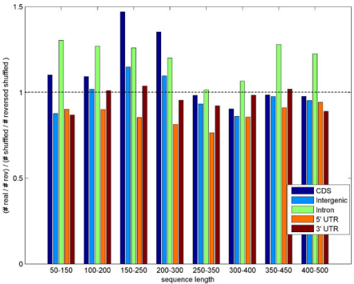 DB ratio in different genomic regions. DB ratios (real to shuffled) in different regions of the Drosophila annotated genome, grouped by lengths. We note that in general the coding regions (CDs and introns) have a DB ratio greater than 1 for all windows lengths, while UTR regions (especially the 5' UTRs) have DB ratio less than 1. Intergenic regions seem to have a ratio that is closer to 1.