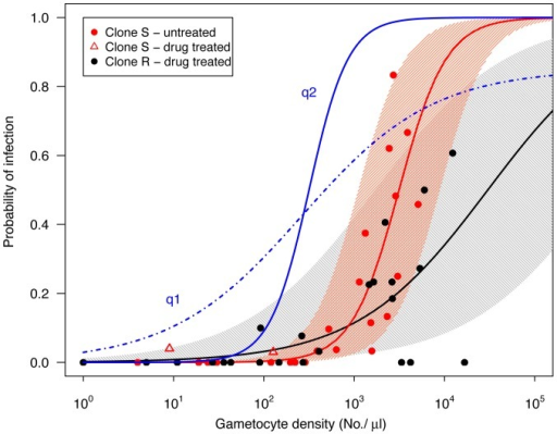 Relationship between gametocyte densities in mice at the time of a blood feed and the subsequent prevalence of infection in mosquitoes fed on those mice for untreated infections with transmission of clone S (red points) and for drug-treated infections with transmission of clone R (black points).The thick red and black lines show the predicted probability of mosquito infection based on logistic regression (eq 1), and the shaded areas show the 90% prediction intervals (note that these are not confidence intervals, see text for details). Two oocysts consisting of clone S were observed in drug treated infections (open red triangles), these were not included in the model (see text). Blue lines are gametocyte density-infectivity functions (of the form q = αNβ/[1+ γNβ]) estimated from P. falciparum data compiled by Carter and Graves [66] and Barnes & White [67]: q1 (dot-dashed blue line;α = 0.03, β = 0.6, α/γ = 0.85) and q2 (solid blue line; α = 1·10−5, β = 2, α/γ = 1) as presented by Huijben et al. [34].