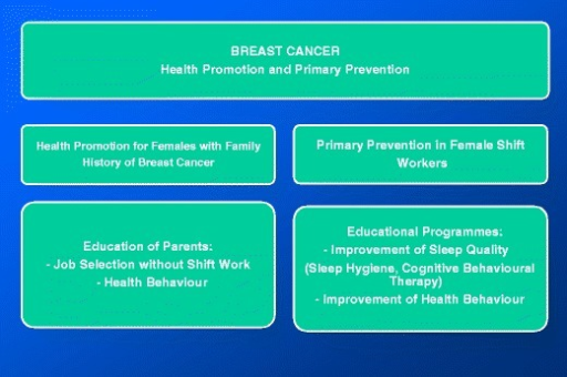 Recommendations for health promotion and primary prevention of breast cancer in shift worker
