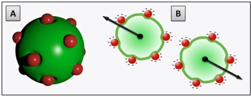 Schematic drawing of a decorated vesicle structure featuring the local membrane bending caused by the particle adsorption (to scale [40]) (A) and the electrostatic repulsion (black arrows) between the adsorbed charged nanoparticles responsible for the colloidal stabilization of the liposome dispersion (B).