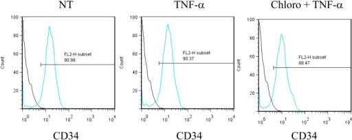 Pharmacological activation of HCMV does not trigger CD34+ cells differentiation.After 7 days of treatment with chloroquine and TNF-α, cells were analyzed by FACS for CD34 surface expression. Representative of experiments performed on cells from three different donors.DOI:http://dx.doi.org/10.7554/eLife.06068.028