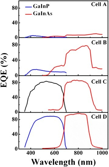 EQE curves for different cell samples.