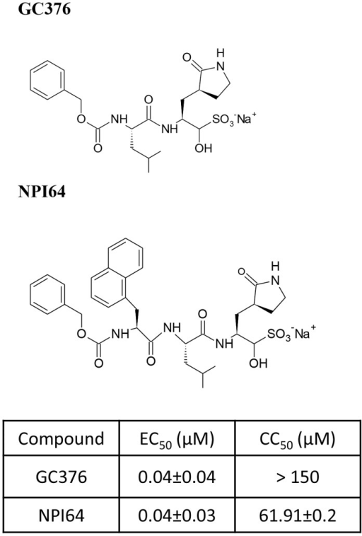 The chemical structures of 3CLpro inhibitors and their antiviral activity against feline coronavirus in cell culture.The chemical structures of GC376 and NPI64 are shown. The 50% effective concentration (EC50) values of GC376 or NPI64 against FIPV 3CLpro [28, 30] and the 50% cytotoxic concentration (CC50) values of GC376 or NPI64 determined in various cell lines were previously reported [28, 30] and summarized in a table.
