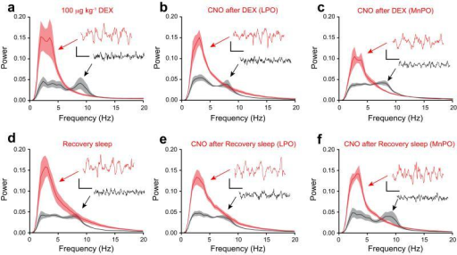 EEG delta power is recapitulated by reactivation of genetically tagged neuronal ensembles in LPO-TetTag-hM3Dq and MnPO-TetTag-hM3Dq mice following dexmedetomidine-induced sedation or recovery sleep. Each panel shows Fourier Transform power spectra when the EEG and EMG signals were scored as either sleep (red) or wake (black). The envelopes represent the s.e.m. (a) Dexmedetomidine sedation (n=7). (b) CNO reactivation after dexmedetomidine sedation for LPO-TetTag-hM3Dq mice (n=8). (c) CNO reactivation after dexmedetomidine sedation for MnPO-TetTag-hM3Dq mice (n=6). (d) Recovery sleep (n=7). (e) CNO reactivation after recovery sleep for LPO-TetTag-hM3Dq mice (n=8). (f) CNO reactivation after recovery sleep for MnPO-TetTag-hM3Dq mice (n=7). Each spectrum is calculated by combining EEG segments totally 20 minutes. The inserts show representative EEG traces, and the accompanying calibration bars represent 100 μV and 500 msec.