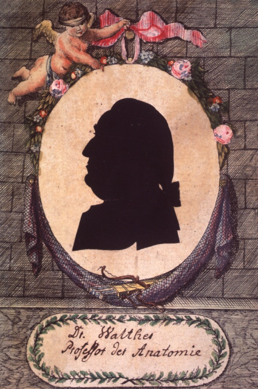 <p>Hand colored with silhouette in left profile.</p>