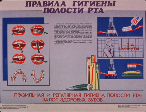 <p>Predominantly light blue poster with multicolor lettering.  All lettering in Cyrillic script.  Title at top of poster addresses rules for oral hygiene.  Visual images are illustrations depicting proper methods for brushing teeth, the use of toothpaste, and care of the toothbrush.  It appears that the text includes a recommendation to brush for 3 to 4 min.  Caption below illustrations may mean that proper, regular oral hygiene guarantees healthy teeth.  Publisher information in lower right corner.</p>