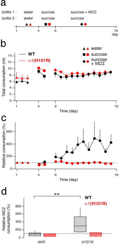 Oral self-administration of MDZa, Protocol for behavioral experiment. b, Total consumption successively with water, sucrose, and MDZ (0.005 mg/ml) + sucrose (4 %) in WT mice (black) and α1(H101R) mice (red). Note that WT and α1(H101R) mice drink similar amounts of liquids. c, Relative MDZ consumption in WT and α1(H101R) mice. d, Corresponding box plots for relative average consumption of MDZ at days indicated. n = 12-18 mice in 4-6 cages. F(3;16) = 5.39