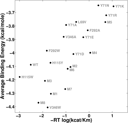 Scatter plot of experimental vs. predicted activity for the top-scoring set of variables (D269 mechanism, ds = 2.00 Å, dt = 2.25 Å, ITASSER/SMD structure, VXts(−) enantiomer, and Gasteiger charges).This dataset has a Pearson correlation of 0.767 (p<10−4)