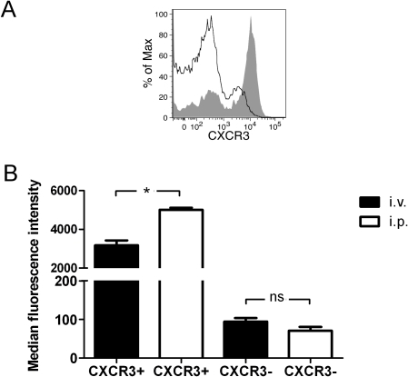 The PerC environment results in increased expression of CXCR3 on CD4+ T cells.(A) The expression level of CXCR3 on CD4+ cells from spleen (black line) or PerC (grey area) of BALB/c mice was determined by flow cytometry. (B) CXCR3+ and CXCR3− CD4+ T cells were sorted from Sp of donor BALB/c mice and stained with CFSE. Cells were then adoptively transferred to naïve recipient animals by i.v or i.p. route. After 24 h, cells were re-isolated from spleens or peritoneal cavities and re-stained with an anti-CXCR3 antibody. The expression level of CXCR3 on CFSE+ cells was then analyzed by flow cytometry. The differences were statistically significant at P<0.001 (*), n.s. – not significant.