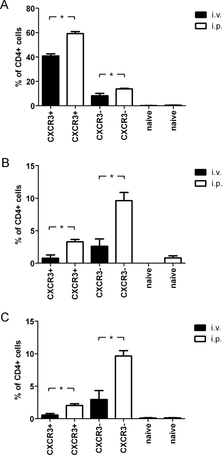 The environment of the PerC results in increased expression of IFNγ by CD4+ T cells.CXCR3+ CD62Llow CD44high, CXCR3− CD62Llow CD44high and CXCR3− CD62Lhigh CD44low CD4+ T cells were sorted from Sp of naïve C57BL/6 mice and stained with CFSE. Then, cells were transferred to naïve recipient animals by i.v. or i.p. rout and re-isolated after 24 h. Cells were re-stimulated with ionomycin, PMA and brefeldinA, stained for (A) IFNγ, (B) IL-4 and (C) IL-17 production and further analyzed by flow cytometry. The percentage of cells producing the different cytokines was subsequently determined. Similar results were obtained in 2 independent experiments. The differences were statistically significant at P<0.01 (*).