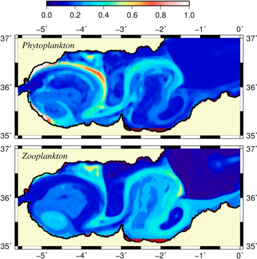 Surface phytoplankton and zooplankton biomass.Horizontal distributions of (a) surface phytoplankton biomass and (b) surface zooplankton biomass (mmol N m−3) at day 120.