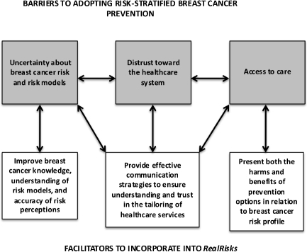 Schema of barriers and facilitators to the adoption of breast cancer risk assessment and risk-appropriate prevention strategies, which will inform the iterative design and refinement of the RealRisks decision aid.
