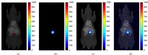 Numerical simulation of CL image. (a) The digital mouse and CL source location. (b) The simulated CLI image. (c) The fusion image of simulated CL and CT data. (d) The fusion image of simulated CL with impulse noises and CT data.