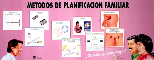 <p>Pink poster with black and white lettering.  Title at top of poster.  Visual images are illustrations of people and of contraceptive methods, including IUD, pills, injection, condoms, spermicides, maternal lactation, calendar method, vasectomy, and tubal ligation.  Note near lower right corner.  Publisher information at bottom of poster.</p>