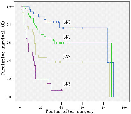 Survival curve and comparison of cumulative survival rates after surgery according to according to pN categories (pN0: no metastatic lymph node, pN1: 1–6 metastatic lymph nodes, pN2: 7–15 metastatic lymph nodes, and pN: > 15 metastatic lymph nodes). There were significant differences among the groups (P < 0.00; Kaplan-Meier and log-rank test).