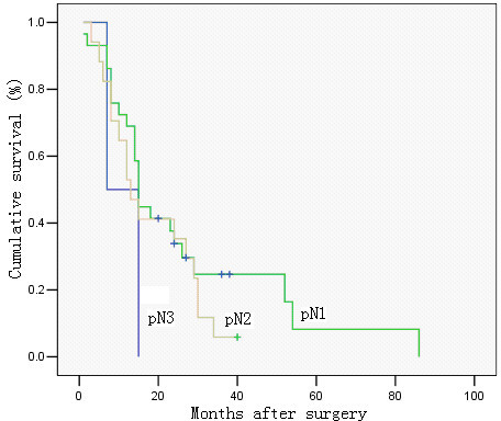 Survival curve of cases with metastatic lymph node ratio 40–79%, in relation to pN category. No significant difference was observed in cumulative survival rates after surgery among the groups (pN1, pN2 and pN3) (P = 0.367; Kaplan-Meier and log-rank test).